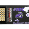 Seagull #REC2